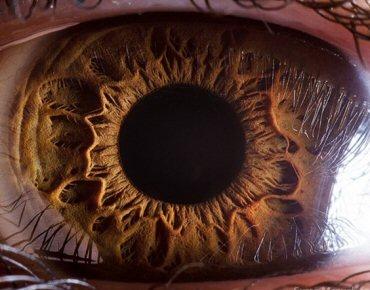 Por que dos 40 aos 60 anos a visão piora significativamente  01406e41bc